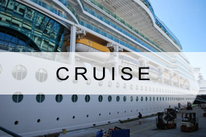 Link to Cruise Search